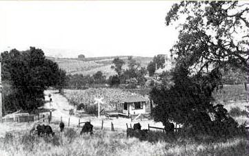 Whitcomb Hill